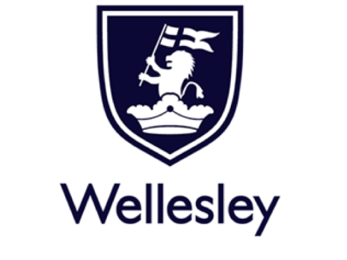 Wellesley Group logo