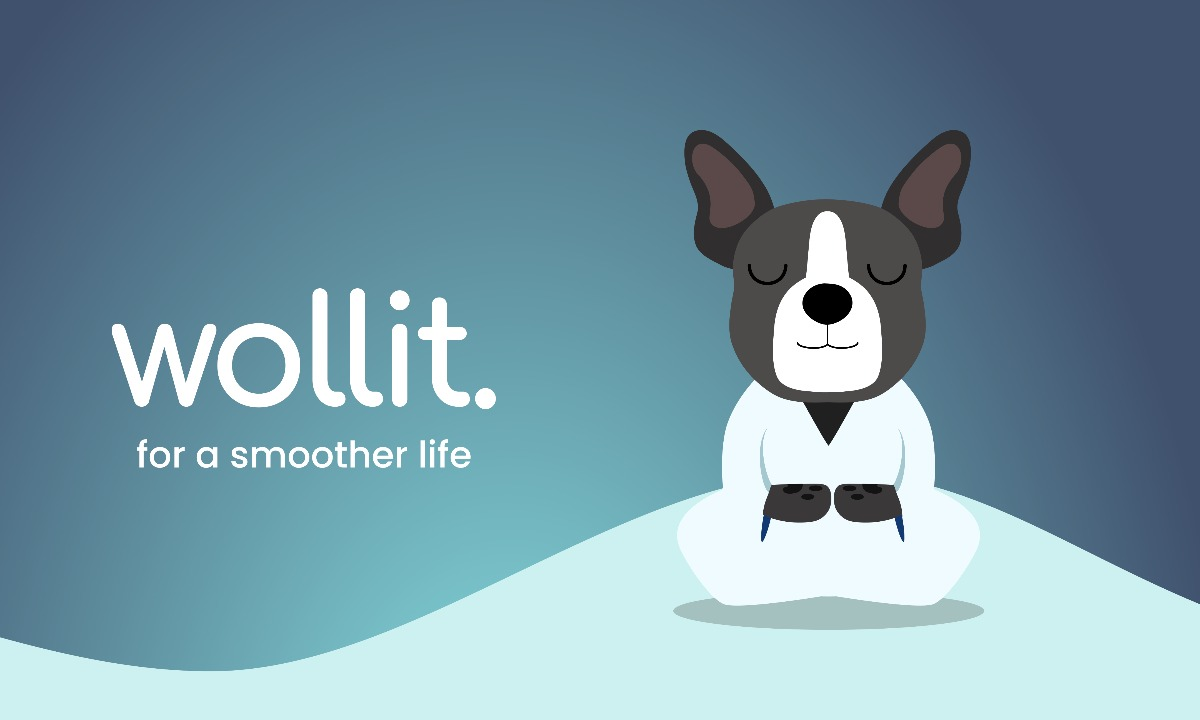 UK-based 'income-smoother' Wollit receives £1m in seed funding