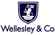 Wellesley mini-bond Series 2 – Would investors be better off investing on the platform directly?